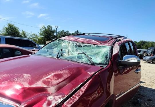 passenger car accident victim